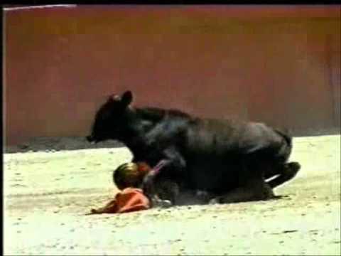 SERENA: Midget rodeo pico rivera