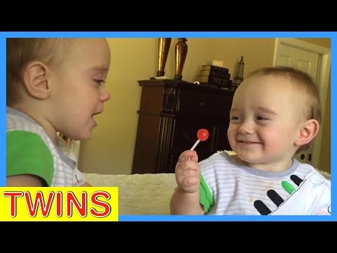 Twin Babies Fight Over Lollipop | Cutest Moments | KYOOT