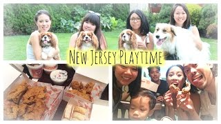 Vlog: New Jersey | Cavalier King Charles Playdate | Family Time | Popeye's Chicken