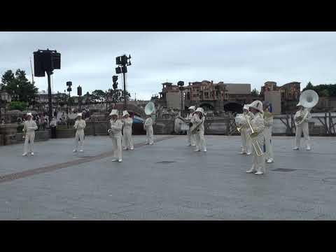 TDS Maritime Band (A) TDS マリタイム・バンド(A)