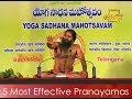 5 Most Effective Pranayamas - Basic Deep Breathing Exercises