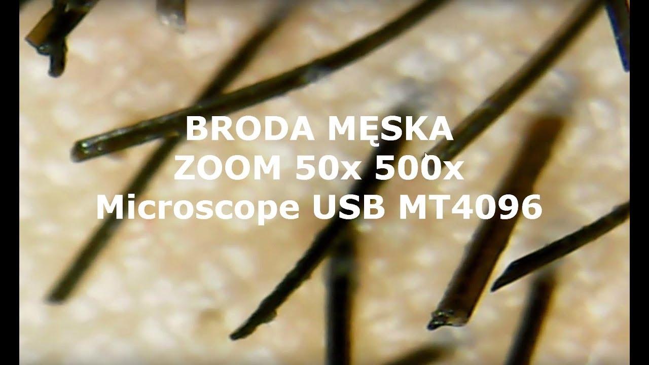 Jak wygląda broda męska w przybliżeniu 50x zoom ? Microscope USB MT4096