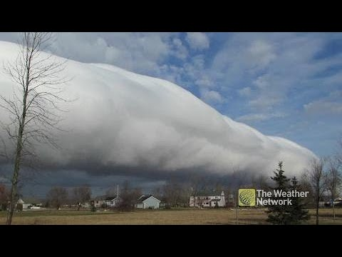 """Canadians stunned by mammoth """"roll of cotton"""" cloud"""