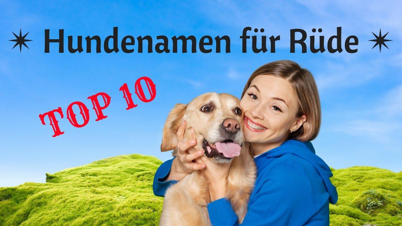 Hundenamen Rüde Top 10