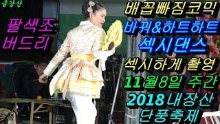 💗버드리 배꼽빠짐 코믹명품💗11월8일 주간 2018 내장산 단풍축제 초청 공연