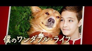 『僕のワンダフル・ライフ』特集 映画館へ行こう with ELLE