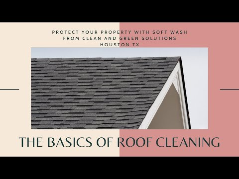 Roof Cleaning Company West Palm Beach Gardens Boca 502