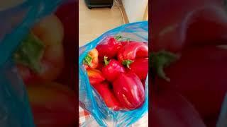 Готовим неострый соус (аджика) из острого перца. 1 - подготовка продуктов для соуса.