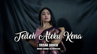 LAGU KARO TERBARU 2019 - TEDEH ATEKU KENA (T.A.K) - TRISNA SHINTA  (OFFICIAL VIDEO)