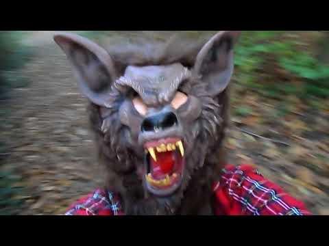 le petit chaperon rouge et le grand méchant loup (25éme épisodes).