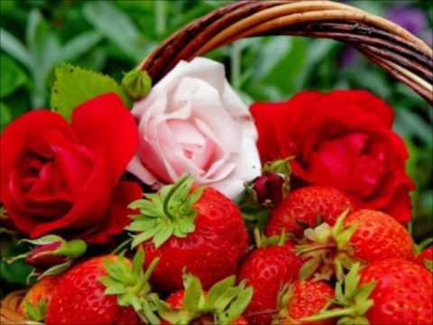 La Trinidad Strawberry Festival Theme Song