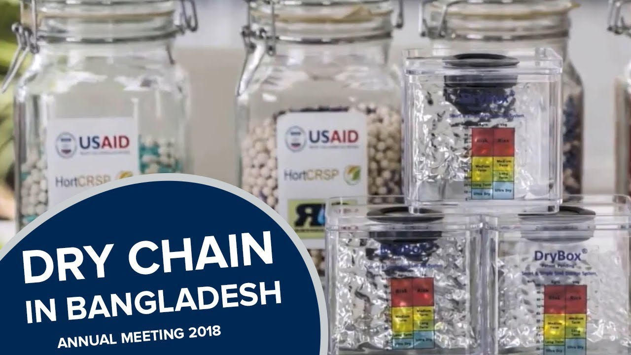 Scaling Drying Beads   Seed Industry in Bangladesh
