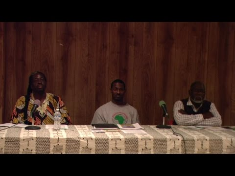 Black Power Moves: Sustainable Living In Africa vs America Panel Discussion