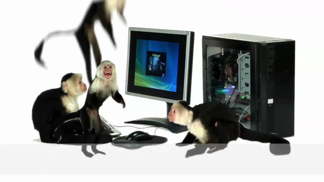 Upgrading graphics - So easy, a monkey can do it! ATI Radeon/AMD