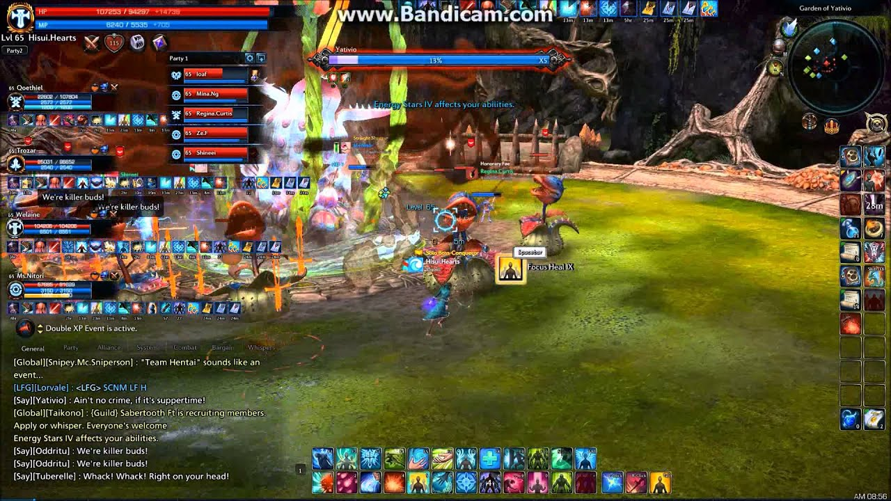 MMORPG HP Bar
