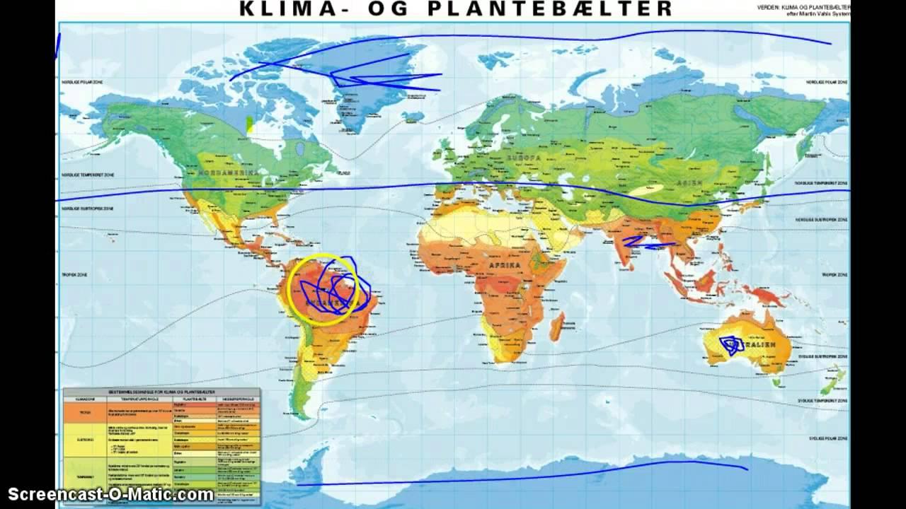 Klima og plantebælter
