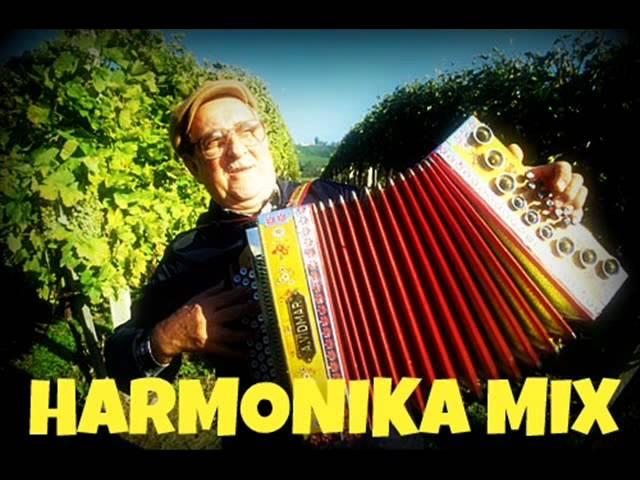 HARMONIKA  MIX and REMIX Shomi DJ
