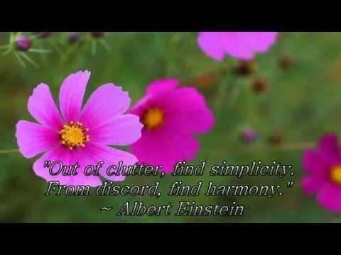 Meditation Quotes Set to Beautiful Meditation Music