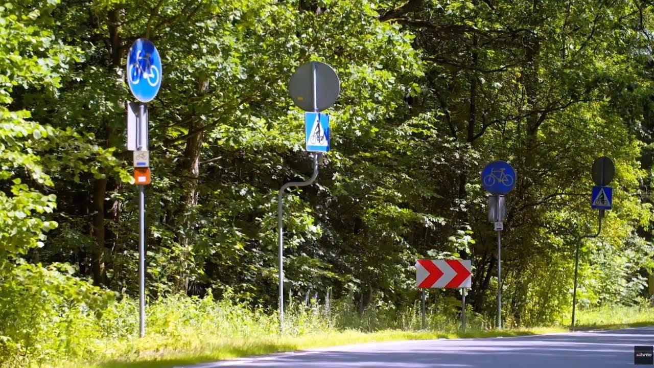 Na tej leśnej drodze jest więcej znaków niż drzew! [Absurdy Drogowe]