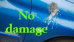 How to remove bird droppings & poop from car body paintwork.