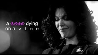 mellie grant | a rose dying on a vine