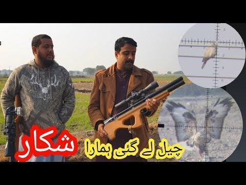 Hunting With Airguns In Pakistan P15 & NovaVista