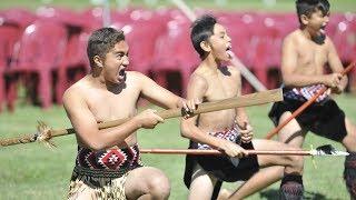 Thousands of visitors arrive for Te Mana Kuratahi kapa haka festival