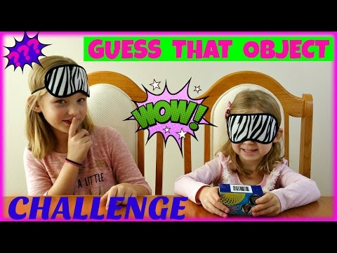 GUESS THAT OBJECT CHALLENGE -Magic Box Toys Collector
