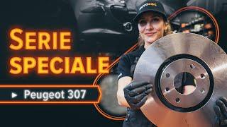 Come sostituire Cuscinetto ammortizzatore PEUGEOT 307 SW (3H) - video gratuito online