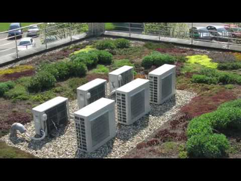 Installation Green Roof
