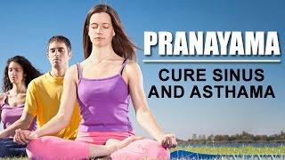 Pranayama - Cure Sinus and Asthama