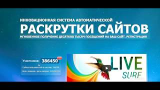 SEO продвижение бесплатно | Накрутка позиций Google Yandex Гугл и яндекс и рост трафика из поиска