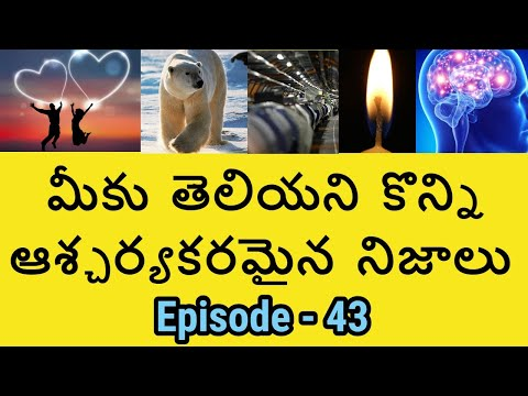 Amazing and Unknown Facts in Telugu Episode-43 | Interesting Facts in Telugu | Telugu Badi