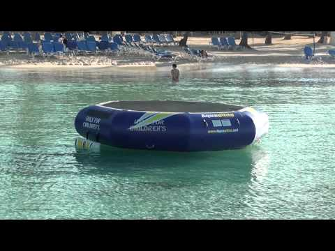 Crystal Clear Beach Water & Exotic Fish In The Dominican Republic