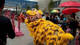 Gamuda Cove Grand opening Lion dance ~ 1