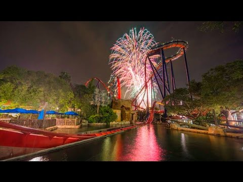 Sheikra at Busch Gardens Tampa Night Time Front Row POV