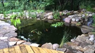DIY - Koi Pond HD1080, basin, bog, bio filter, UV sterilizer, planted under-gravel filtration grid