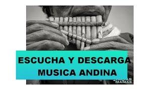 Música andina instrumental lo mejor ( killay - Niños de la puna )