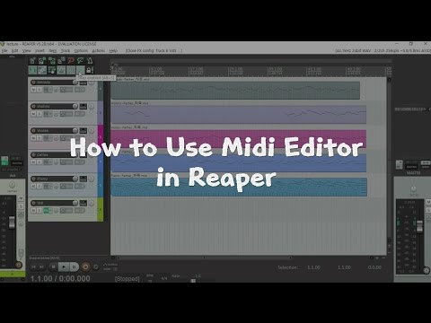 How to use Midi Editor in Reaper