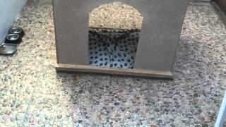 Construir una casa de perro de bajo presupuesto pt2