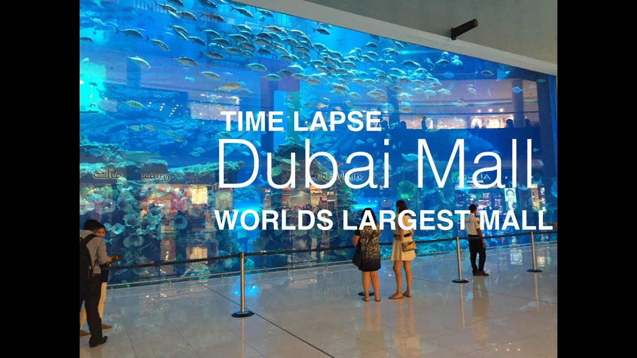 Fantastic Dubai Mall Timelapse The World S Largest Shopping Mall Youtube