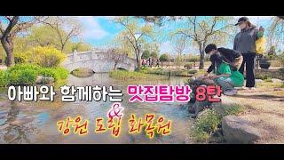 맛집탐방/춘천맛집/아침해칼국수/강원도립화목원/KBS2생…