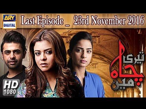 Teri Chah Mein Last Episode - 23rd November 2016  - ARY Digital Drama