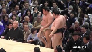 2017大相撲春場所での豪栄道 vs 貴ノ岩 の取組。