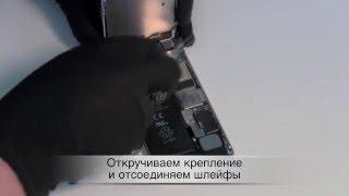 Ремонт iPhone 5 замена динамика(Подробная инструкция по разбору iPhone 5. http://macplus.ru/ --- ремонт техники Apple http://mac-parts.ru/ --- магазин запчастей Apple., 2012-10-04T23:25:53.000Z)