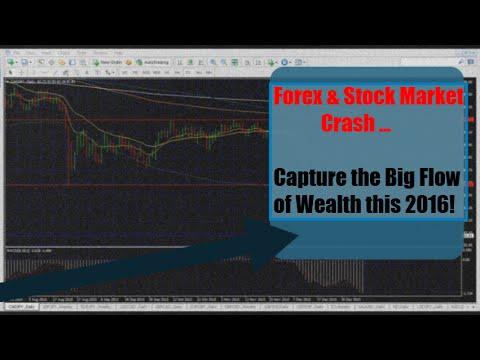 Forex if the stock market crash