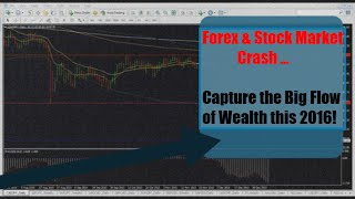 Forex Stock Market Crash 2016