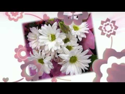 Flower Shop Calgary AB | (587) 333-7931