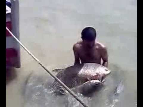 Fishing in Pakistan Dadyal water rising Mangla dam