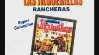 LAS JILGUERILLAS RECOPILACION DE  14 EXITOS PEGADITOS